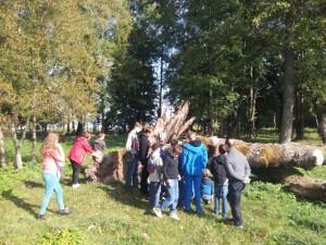 Meteli__ regioniame parke - 39